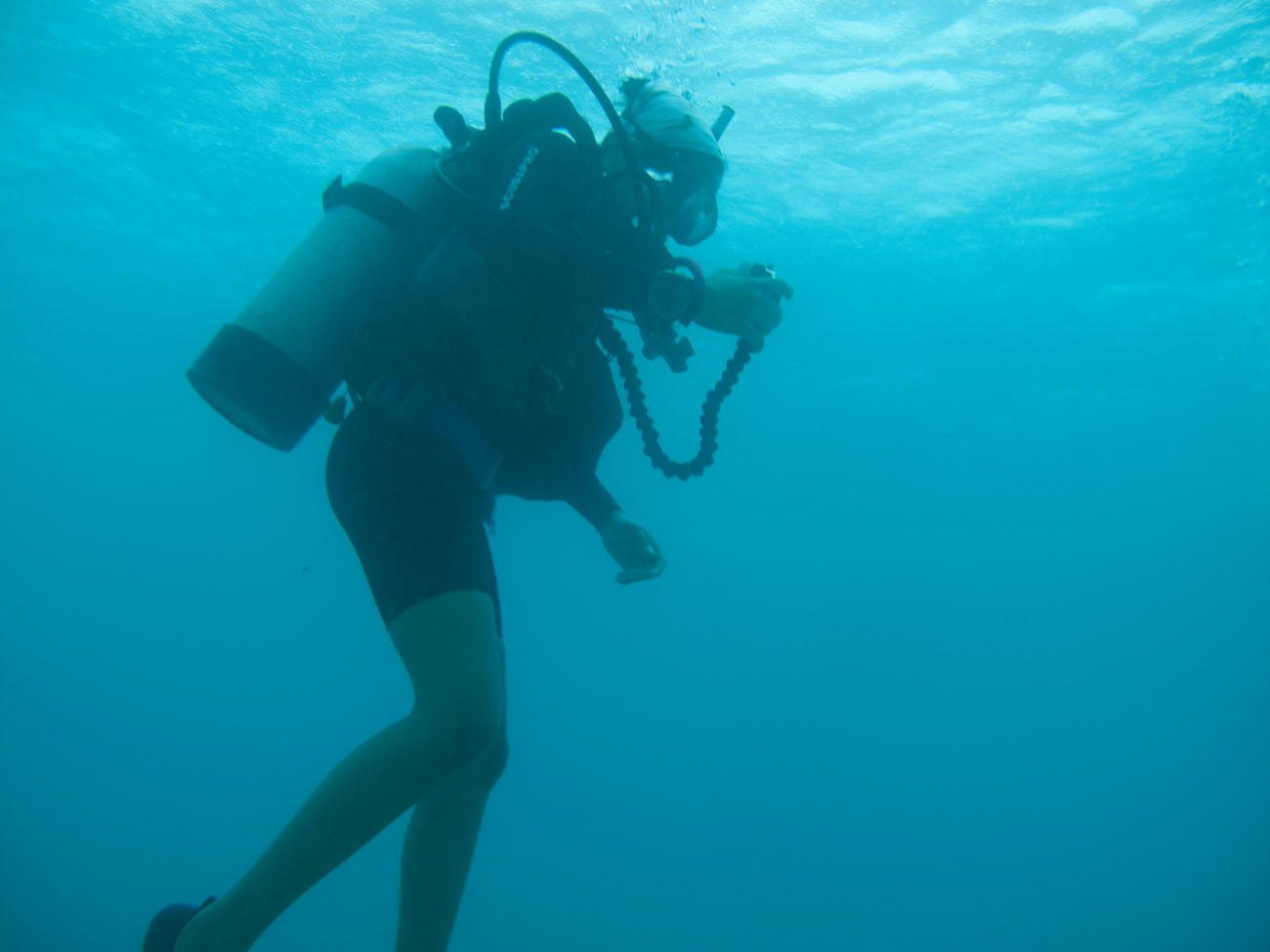 diving-044833
