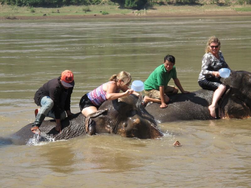Elephant-park (110)