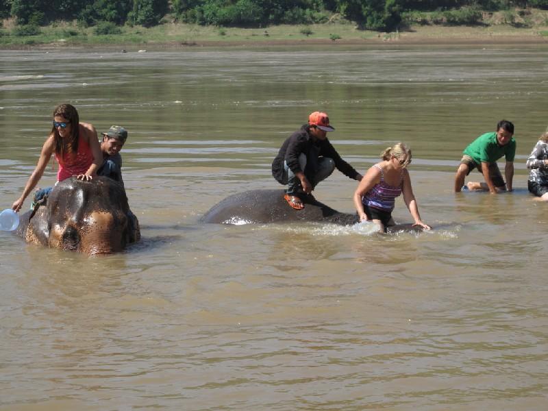 Elephant-park (115)