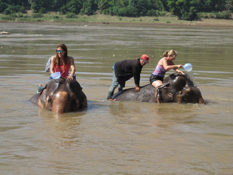 Elephant-park (120)