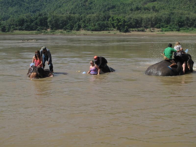 Elephant-park (129)