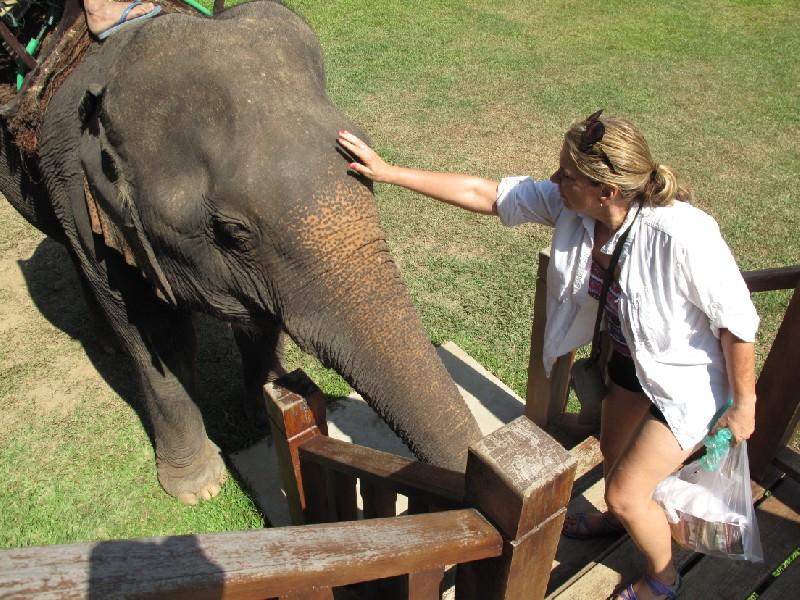 Elephant-park (78)