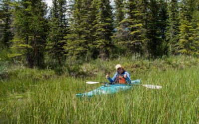 Kayaking The Athabasca River
