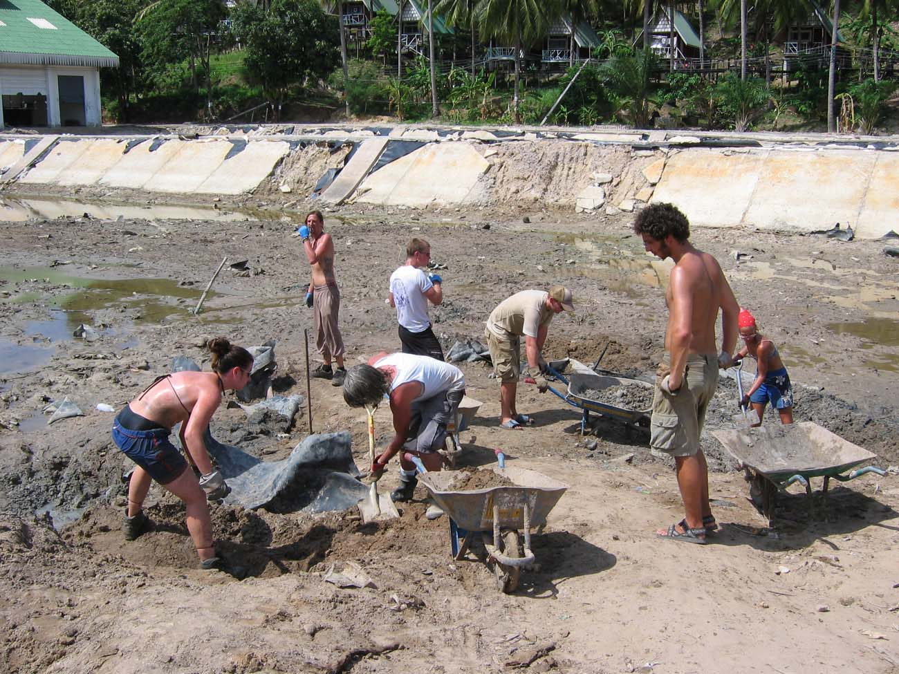 cleanup-PhiPhi-0932