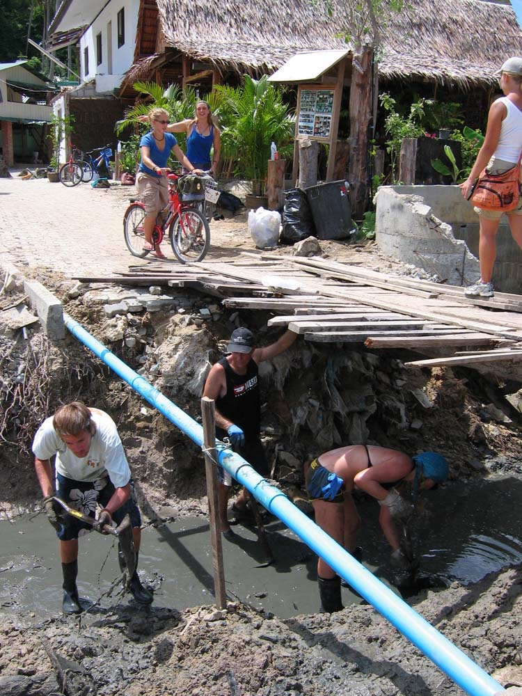 cleanup-PhiPhi-0945