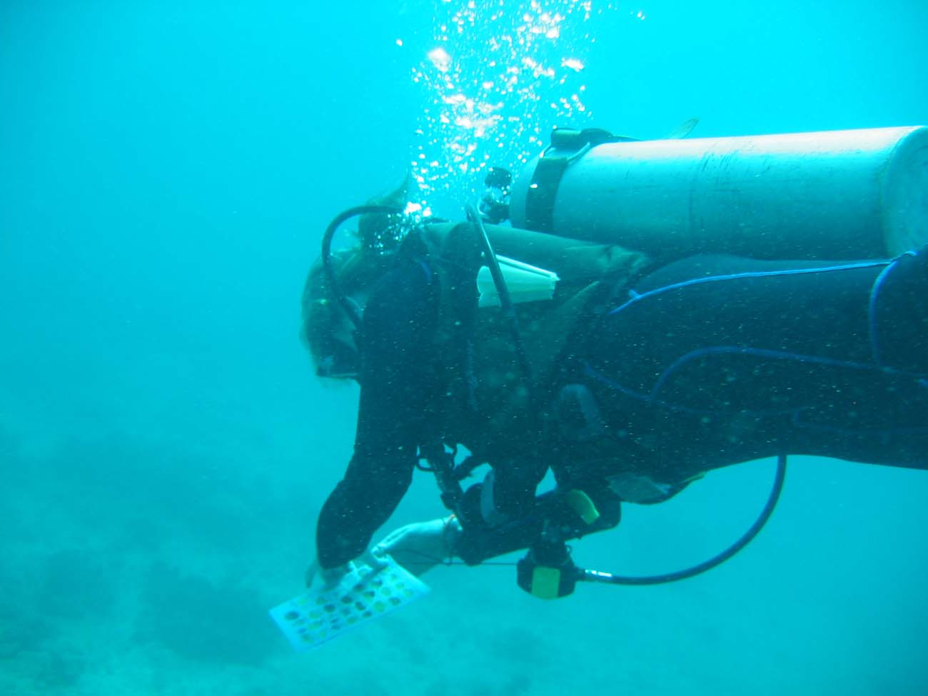 dive-certification-PhiPhi-1161