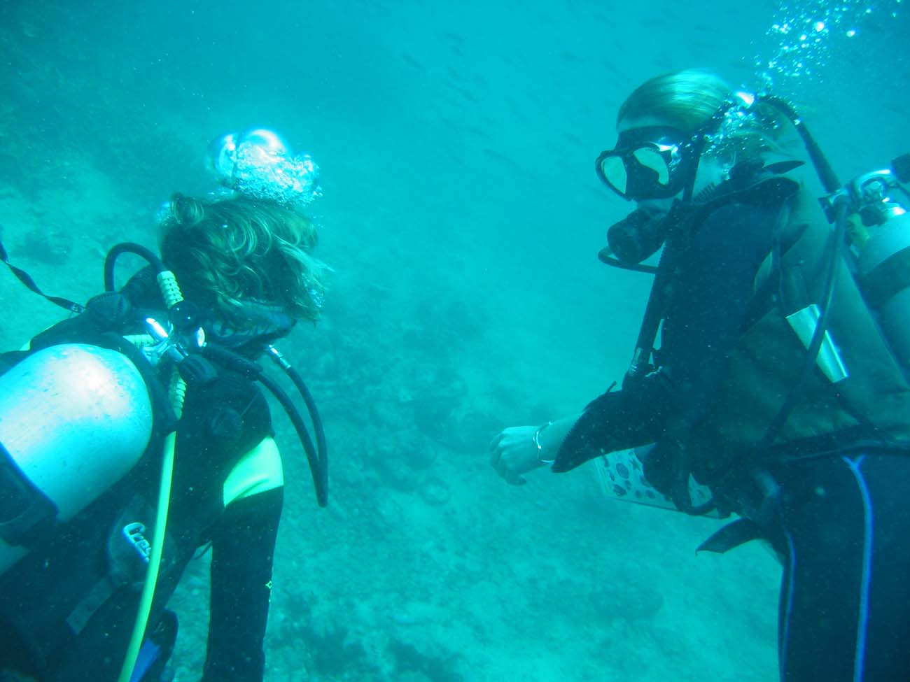 dive-certification-PhiPhi-1170