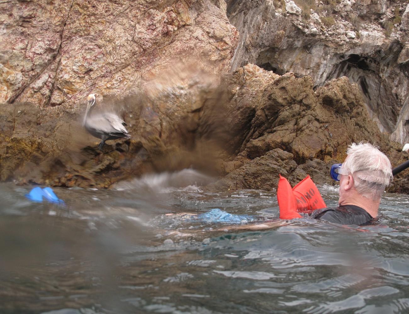 snorkeling-pv (67)