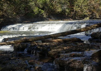 Tennessee_4438