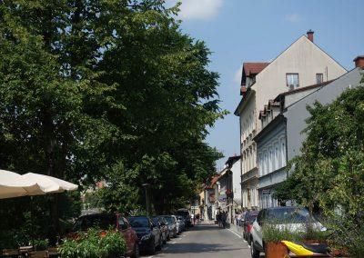 Town of Ljubljana
