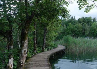 20190623-3383-Croatia-Lake-Plitvice